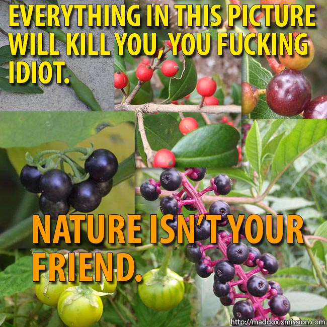 Here's a bunch of fruit and vegetables found in nature that are highly toxic. Eat up, dipshits!